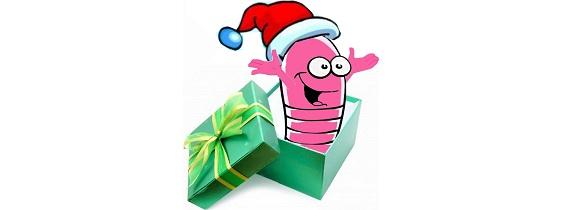 Pour les fêtes, pensez aux éco-cadeaux !