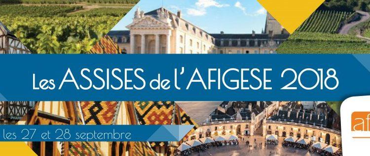 Assises AFIGESE: engager les fonctions ressources dans la performance des politiques de solidarité