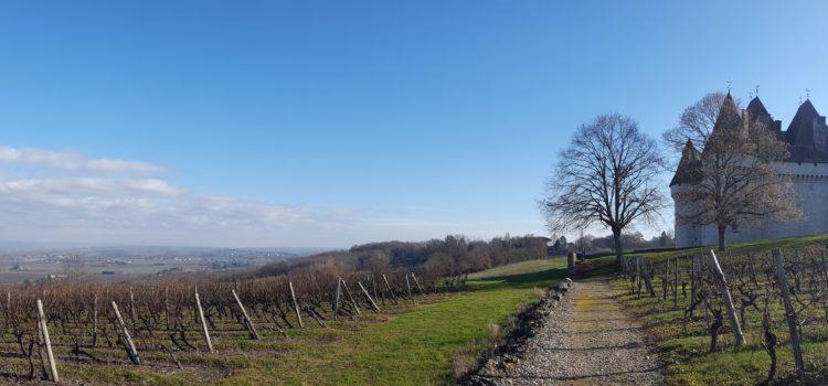 Le Grand Bergeracois : un territoire périgourdin qui défie la crise rurale et agricole